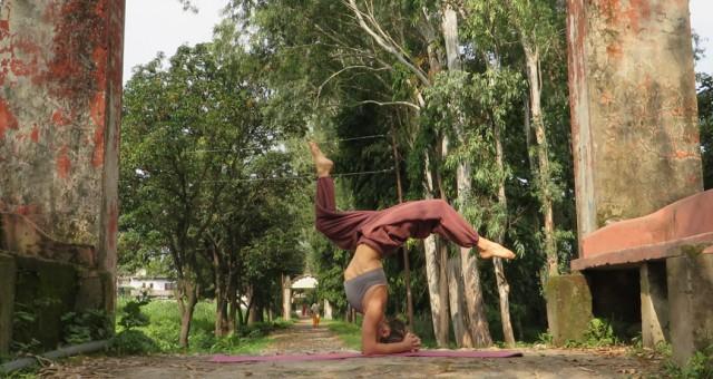 Capire la pratica dello Yoga
